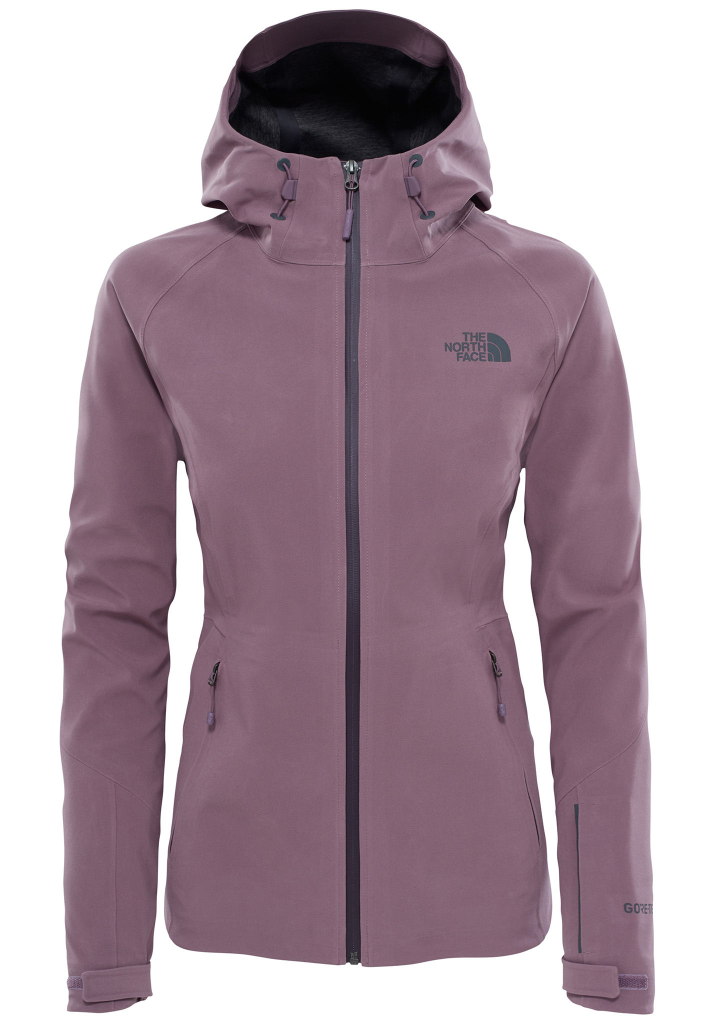 d9ea3dffd THE NORTH FACE Apex Flex GTX - Functional Jacket for Women - Purple