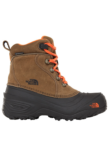 2bccbce01 THE NORTH FACE Chilkat Lace 2 - Hiking Shoes - Brown